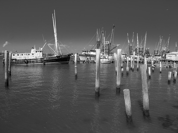 Mayport Shrimping Fleet